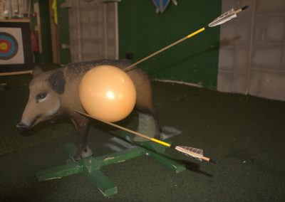 boar-target-and-balloon